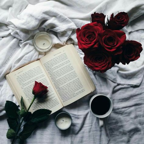 Shared by Grace Teos. Find images and videos about photography, photo and book on We Heart It - the app to get lost in what you love.