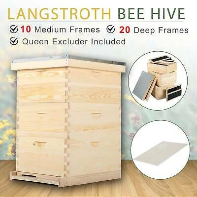 30 Frame Langstroth Beehive Frames Bee Hive Frame For Beekeeping W Metal Roof In 2020 Framed Bee Metal Roof Bee Hive