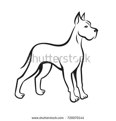 Dog Line Drawing Great Dane Can Be Used As Pet Shop Logo Or