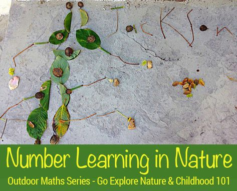 Math Games - Number learning with nature - Counting