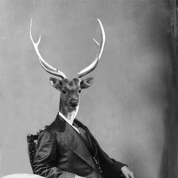 Stag art 8 x 10 inch print deer in suit victorian animal in clothes masculine wall art gift for men deer with antlers art frighten pinterest deer