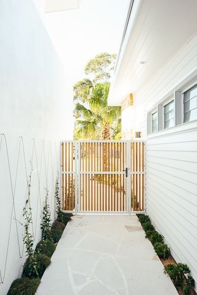 Side fence and gardens