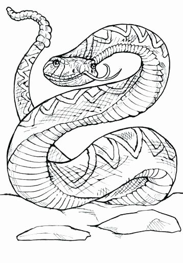 Rattlesnake Coloring Page Printable Snake Coloring Pages Coloring Pages Snake Drawing