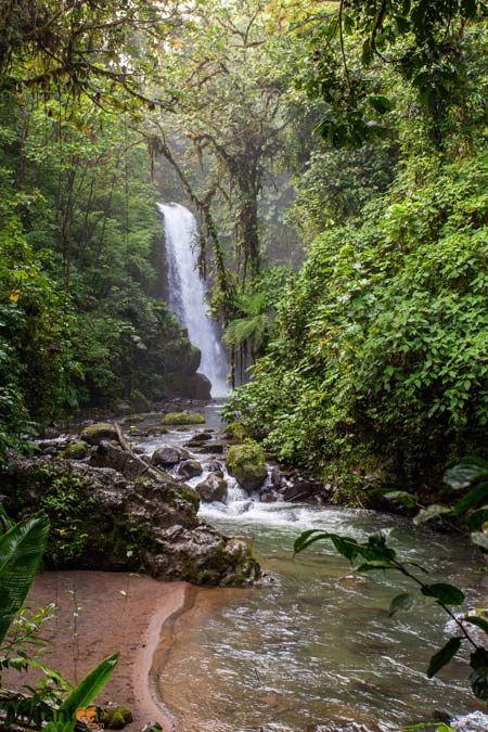 948515f0e44200809a1872f031e4a514 - La Paz Waterfall Gardens Tour From San Jose