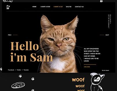 Check Out New Work On My Behance Portfolio Shelter Zo For Homeless Cats And Dogs Http Be Net Gallery 73950785 Shelter Zo For Homeless Cats And Dogs