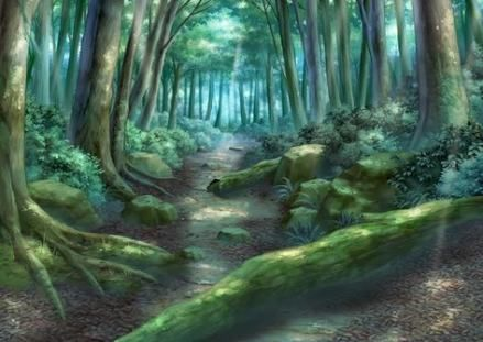 Landscaping Forest Drawing 62 Ideas For 2019 Drawing Landscaping Forest Drawing Anime Scenery Forest Background