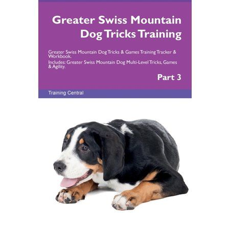 Greater Swiss Mountain Dog Tricks Training Greater Swiss Mountain