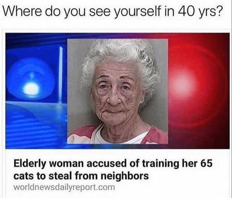 Where do you see yourself in 40 years? - Elderly woman accused of training her 65 cats to steal from neighbors