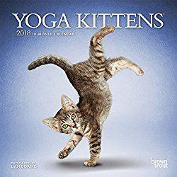 Pin On Cat Calendars 2018