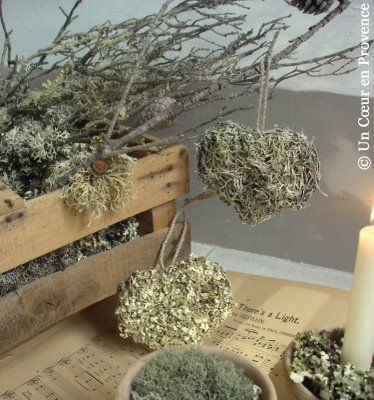 A Heart in Provence: Hearts of lichen