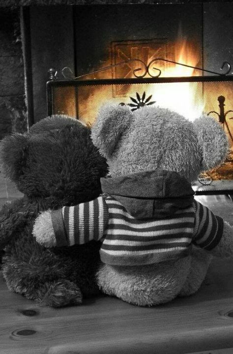 Pinterest : @cutipieanu  #Teddy