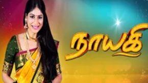 Nayagi 02-04-2018 Sun TV Serial  Watch Tamil drama Naayagi 02 04