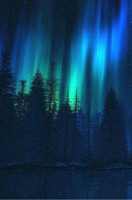 Best Painting Tree Northern Lights Ideas Painting Northern Lights Wallpaper Northen Lights Aurora Boreal