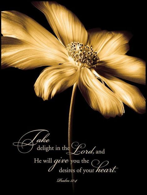 """Christian Wall Art - """"Delight Yourself in The Lord .. Desires of Your Heart"""""""