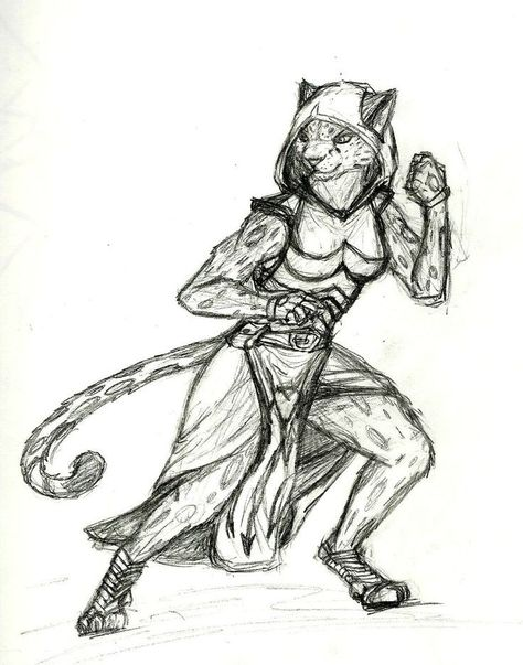 List of Pinterest tabaxi female dnd pictures & Pinterest tabaxi