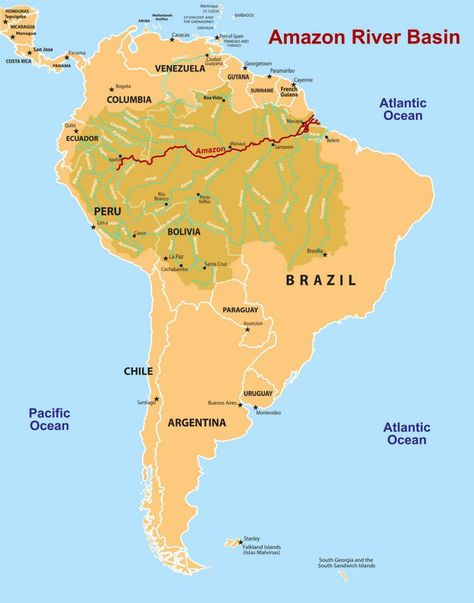 The Amazon River Basin Covers About 40 Of South America And Is