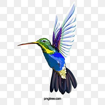 Blue Fresh Hummingbird Decorative Pattern Hummingbird Clipart Blue Fresh Png Transparent Clipart Image And Psd File For Free Download Bird Figure Bird Illustration Watercolor Hummingbird