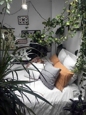 38 Comfortable Bedrooms With Plants Theme Decor Ideas Bedroomplants Bedroomthemes Bedroom Be Room Inspiration Bedroom Bedroom Themes Comfortable Bedroom