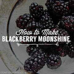 How to Make Blackberry Moonshine – Copper Moonshine Still Kits - Clawhammer Supply