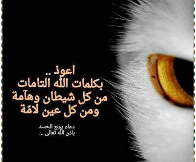 صور عن الحسد رمزيات و خلفيات عن العين و الحسد ميكساتك Quran Verses Love You Best Friend Verses