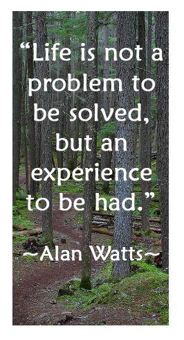 Top quotes by Alan Watts-https://s-media-cache-ak0.pinimg.com/474x/95/04/f3/9504f39b9a66bf68659dd62e11cb33e4.jpg