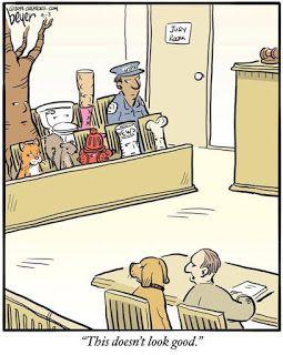 Mystery Fanfare Cartoon Of The Day The Jury Funny Cartoons Dog Jokes Fun Comics