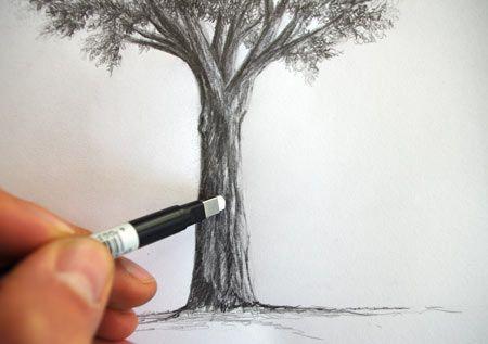 technique pour dessiner un arbre au crayon et le contraster