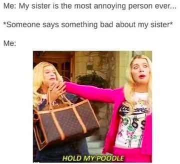 27 Of The Best Sister Memes Of All Time Sibling Memes Funny Pictures Growing Up With Siblings