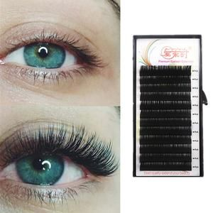 b2fc6554852 Difference Between Mink And Silk Eyelash Extensions Reviews | animals | Best  eyelash glue, Eyelash glue, Sensitive eyes