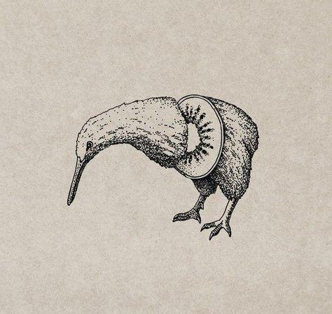 Kiwi the Kiwi dotwork tattoo