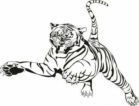 Pin By Marilyn Wheeley On Tiger Animal Coloring Pages Monster Truck Coloring Pages Butterfly Coloring Page