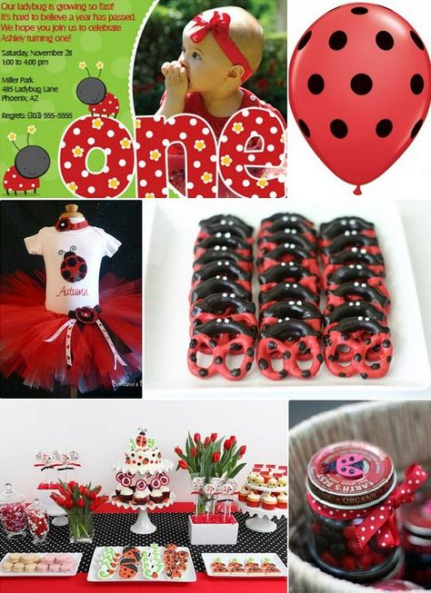 Lady Bug Birthday Party Ideas. Cute 1st Birthday For Your Little Girl!