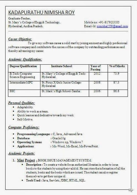 Career Cv Sample Template Example Ofexcellent Curriculum Vitae