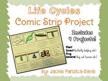 Life Cycle Comic Strip Project With Rubric Life Cycles Comic Strips Grading Rubric