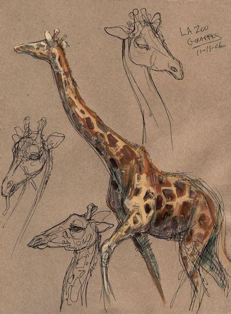 Joe Weatherly Fine Art – Menopause For A Woman Animal Sketches, Art Drawings Sketches, Animal Drawings, Nature Sketch, Arte Sketchbook, Wildlife Art, Art Tutorials, Art Inspo, Painting & Drawing