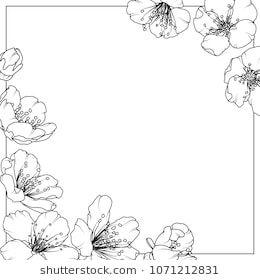 Cherry Sakura Aliche Tree Flowers Spring Bloom Blossom Detailed