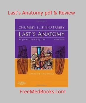 Read our complete review of last's anatomy  Also download