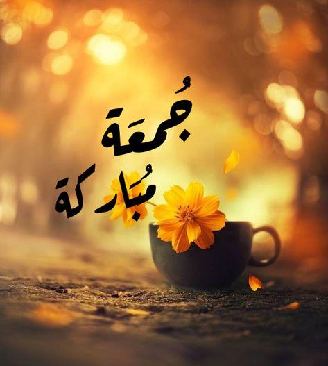 أجمل صور ليوم الجمعة ماجمل العبارات مداد الجليد Friday Images Jumma Mubarak Beautiful Images Beautiful Morning Messages