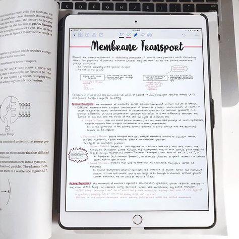 biology notes on iPad Pro