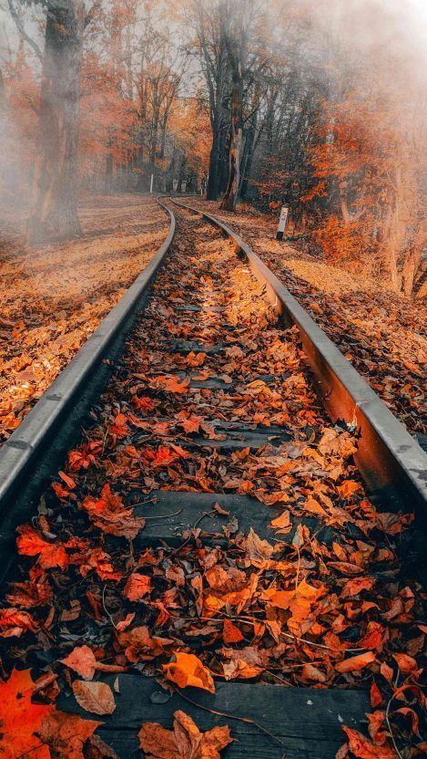 Railway Autumn Iphone Wallpaper Falliphonewallpaper Iphone