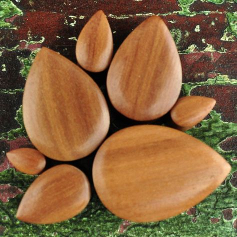 Pair of Sabo Wood Double Flared Ariels Shells Plugs