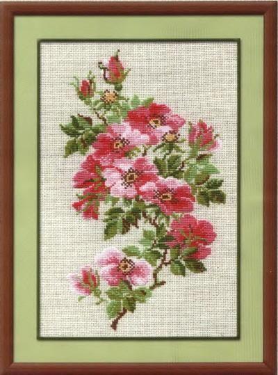 Wild Rose Free Cross Stitch Pattern