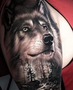 Pin By Edilma Fuentes Gurule On Mis Pines Guardados In 2020 Wolf Tattoo Sleeve Nature Tattoo Sleeve Wolf Tattoos Men