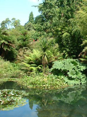 95b37e3b859903ec52d1477ca5ddbc93 - Fowey To Lost Gardens Of Heligan