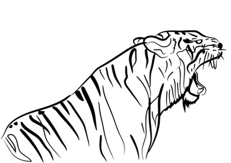 67 best tiger coloring pages images  coloring pages free