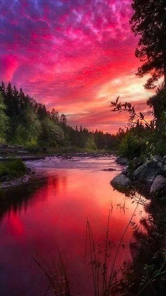 Pink Purple Orange Scene Mesmerizing Beautiful Stunning Nature Pure Fresh Beautiful Landscape Photography Landscape Photography Nature Pictures