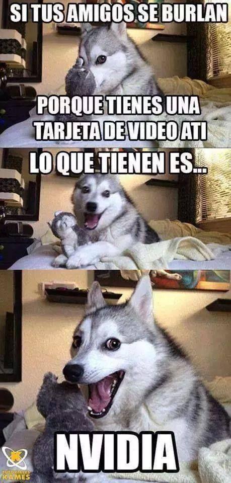Jajajajaja Memes De Animales Divertidos Memes De Perros Chistosos Memes Perros