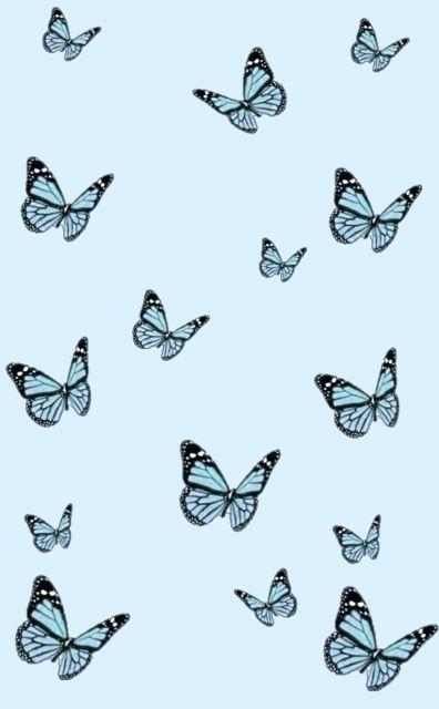 Blue Butterflies Butterfly Wallpaper Blue Wallpaper Iphone Blue Butterfly Wallpaper Blue butterfly wallpaper aesthetic