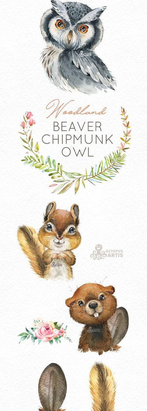 Beaver Chipmunk Owl. Watercolor animals clipart, woodland, forest, wreath, flowers, kids, cute, nursery art, nature, realistic, wild