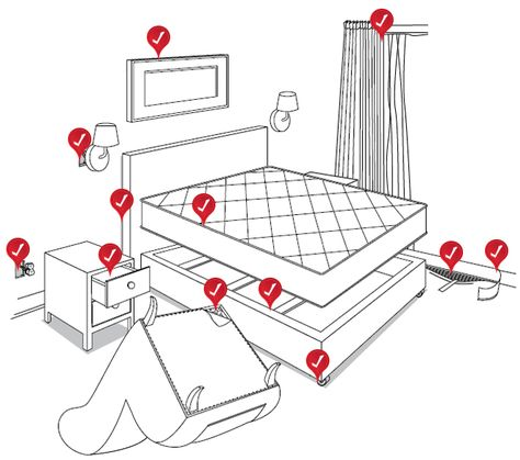 How to Check for, Find & Spot Bed bugs - DIY Bed bug Inspection